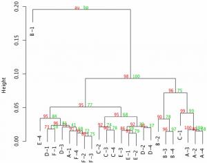 segmentação no cluster analysis