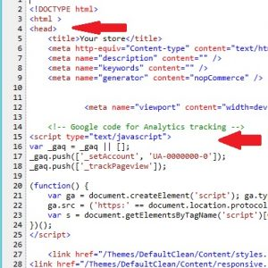 Codigo Google Analytics No Website